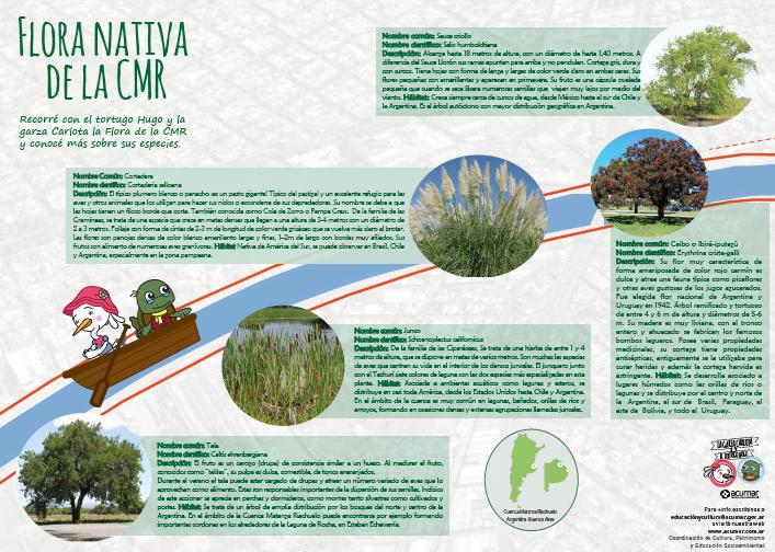 Flora y Fauna Nativa